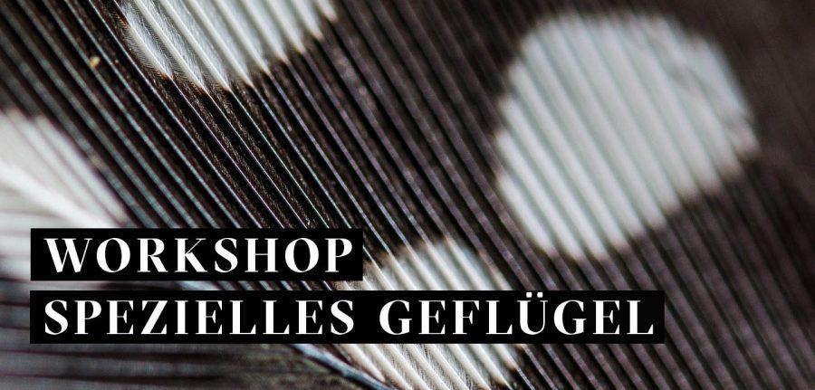 Workshop Spezielles Geflügel, Bild Feder Perlhuhn